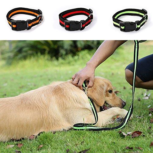 Lai-LYQ schattig verstelbare hond kat Puppy Decor hals kraag gesp riem ketting Choker - rood S, GreenS, Groenen