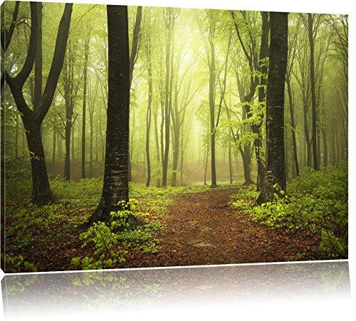 Pixxprint Sonniger Weg im atemberaubenden Wald, Format: 120x80 auf Leinwand, riesige Bilder fertig gerahmt mit Keilrahmen, Kunstdruck auf Wandbild mit Rahmen