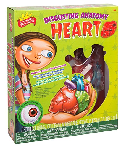 Scientific Explorer Disgusting Anatomy Heart
