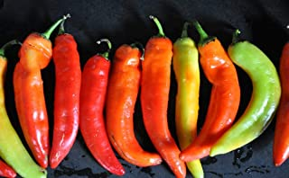 Inferno F1 Hybrid Hot Pepper Seeds (100 Seeds)