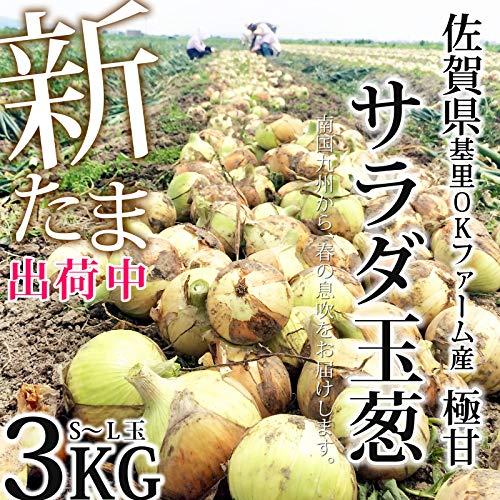 佐賀県産 新たまねぎ 3kg(2021春一番採り 極甘 サラダ玉ねぎ)(S〜Lサイズ無選別)(新玉ねぎ 出荷中)