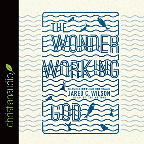 The Wonder-Working God audiobook cover art