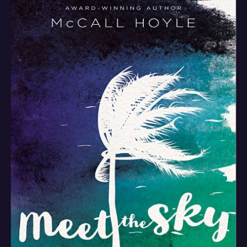 Meet the Sky cover art