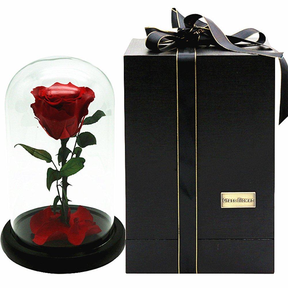 HY&PPJQ Regalo Creativo Bella y Bestia Flor eterna,Principito Rosa Cubierta de Cristal Día de San valentín Flores secas Caja de Regalo Don-A: Amazon.es: Hogar