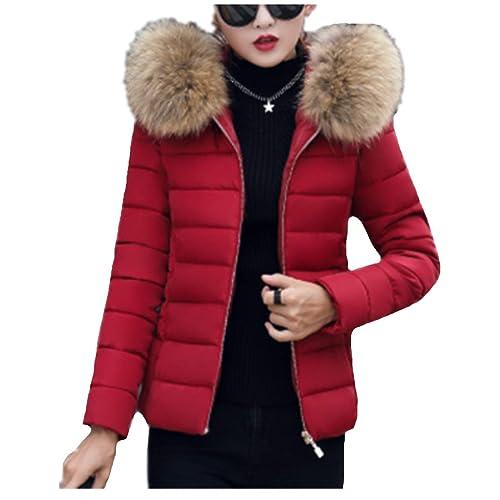 Fanessy Manteau Femme Hiver Doudoune Femme Court à la Mode avec Capuche en  Fourrure Mince Garder 67332b6f32e