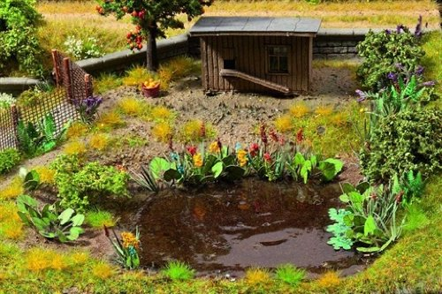 Noch 14052 - Wasser- und Uferpflanzen