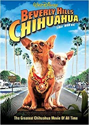 chihuahua dog movie