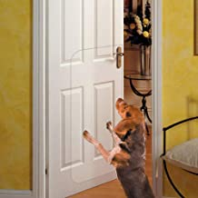 stop dog scratching door
