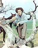 Laramie Cast Posed on Tree Branch Cowboy Outfit Photo Print