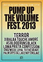 PUMP UP THE VOLUME FEST. 2013 DVD