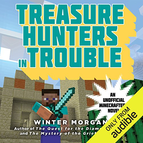 Treasure Hunters in Trouble audiobook cover art