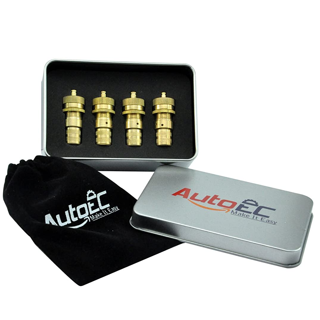 AutoEC Tire Deflator, Adjustable Brass Tyre Deflator Kit for Off Road Tires, Car, Truck, Jeep and ATV (4 Pack)