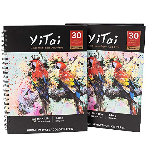 """YiTai 9x12"""" Expert Watercolor Pad, Pack of 2, 60 Sheets (140lb/300gsm), Spiral Bound Artist Drawing Books, Drawing Sketchbook, Durable Acid Free Drawing Paper,Perfect for Wet, Dry & Mixed Media"""