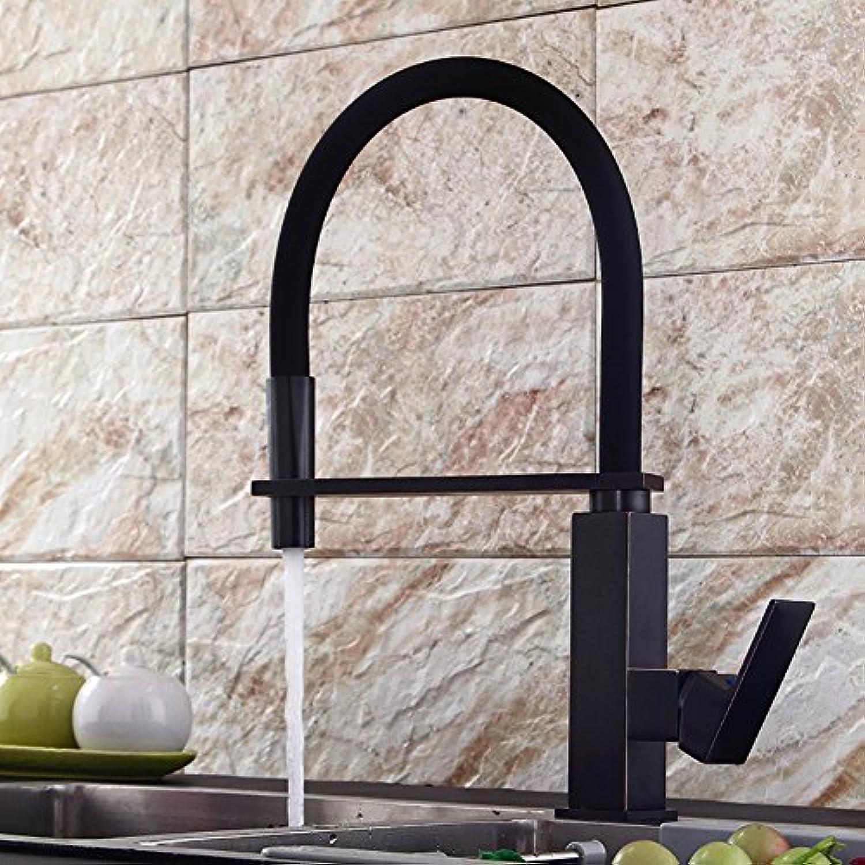 Aich Moderne Schwenkbaren Wasserhahn European Antique Wasserhahn Retro Schwarz Bronze Einfache Rotation Küchenarmatur-B
