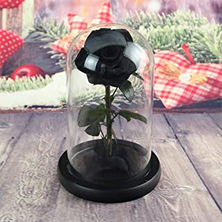 Real Rose 8.6''H Beauty and The Beast Enchanted Rose, Preserved Fresh Rose in Glass Dome Romantic Forever Gift for Her Anniversary Valentine's Day Christmas Mothers Day - Black, 8.6''H