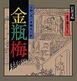 金瓶梅 全10冊セット (岩波文庫)