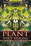 Plant Spirit Healing: A Guide to Working With Plant Consciousness...
