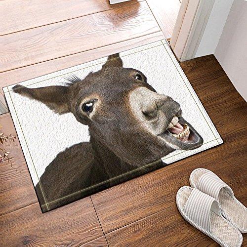 CdHBH Animal Lover Cute Funny Donkey Bath Rug Non-Slip Floor Entryways Outdoor Indoor Front Door Mat,60x40cm Bath Mat Bathroom Rugs