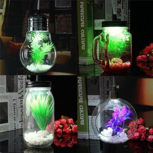 Bazaar Moderne Jar Schalen Birnen Kugel Art Glaspflanzen Decken hängende helle hängende Lampe für Innendekor