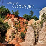 Georgia Wild & Scenic 2022 7 x 7 Inch Monthly Mini Wall Calendar, USA United States of America Southeast State Nature