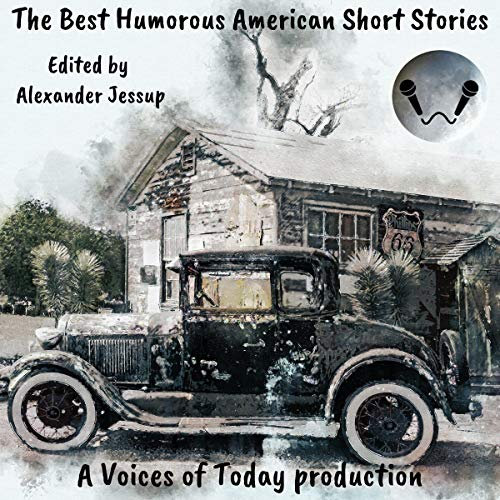 The Best Humorous American Short Stories cover art
