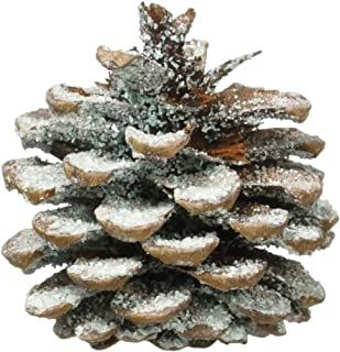 Plow & Hearth Fireplace Color Changing Pine Cones Wood Burning Accessories