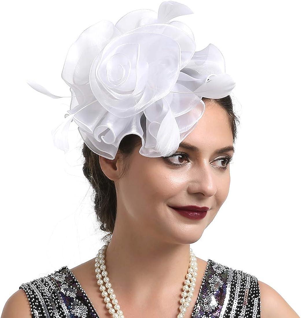 Fascinator Hat 20s Pillbox Hat Cocktail Tea Party Top Hat Derby Kentucky Wedding Headwear for Girls and Women