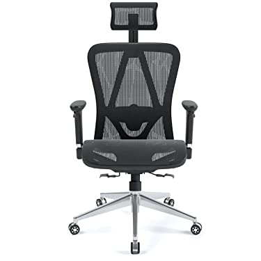 Halter Executive Ergonomic Mesh Office Chair with Adjustable Headrest and Armrest (Mesh Seat)