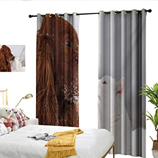 Winter Sliding Curtains Irish Setter and Cute White Cat in Snow Kissing Friendship Love Romance Darkening and Thermal Insulating W108 x L84