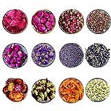 CoolCrafts 12 Tipos de Flores Secas Naturales Flores Secas para Decorar Bomba de Baño Velas Jabones, Lavanda Seca, Rosa Seca, Jazmín Secas