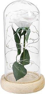LEDMOMO Rosa de seda blanca y luz de cadena Led en una cúpula de cristal Rosa artificial en una lámpara de mesa de madera Base para regalos de San Valentín Aniversario de cumpleaños de la boda
