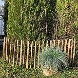 Sellnet Staketenzaun Gartenzaun Haselnussholz Zaun Imprägniert Lattenabstand 3-4cm Höhe 50-150cm (Länge x Höhe: 500 x 50 cm, Lattenabstand: 3-4 cm)
