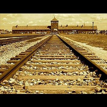 'Auschwitz - Birkenau'