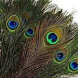 awtlife 48x 10–12'ojo de pavo real Natural cola plumas para mesa de boda, artes y oficios, decoración del hogar