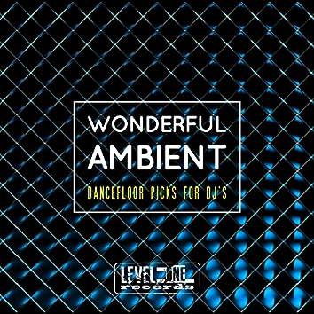 Wonderful Ambient (Dancefloor Picks For DJ's)