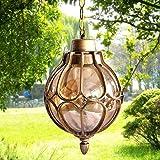 Modeen 1-Light Outdoor Waterproof Pendant Light European Tradition Victoria Glass Lantern Ceiling Lamp...