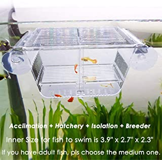 fish tanks for breeding
