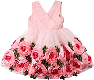 Fairy Baby Girl 3D Flowers Princess Gown Pageant Dress Kids Party Wedding Bridesmaid Outfit