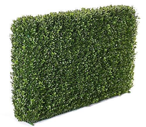 artplants.de Set 'Künstliche Buchshecke und UV Schutz Spray' - Kunsthecke Tom, Metallrahmen, uv - sicher, grün, 100x50cm