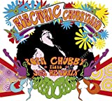 Songtexte von Popa Chubby - Electric Chubbyland