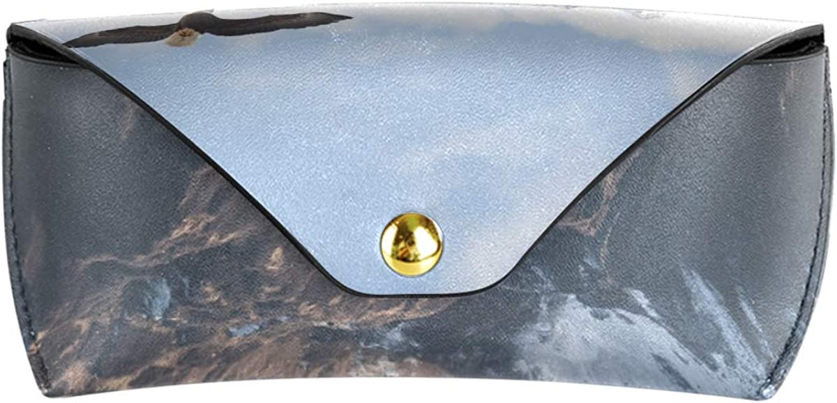 Sunglasses Case Eyeglasses Pouch Storage Portable PU Leather Multiuse Mountains Flying Bird Goggles Bag
