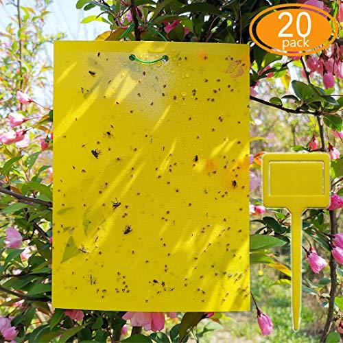 ALIGADO Dual-Sided Yellow Sticky Traps 20 Sheets, 8x6 Inch, with Twist...