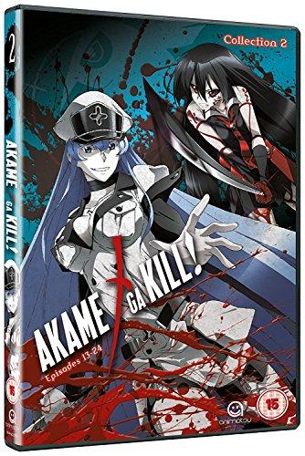 Akame Ga Kill Collection 2 (Episodes 13-24) [Edizione: Regno Unito] [Edizione: Regno Unito]