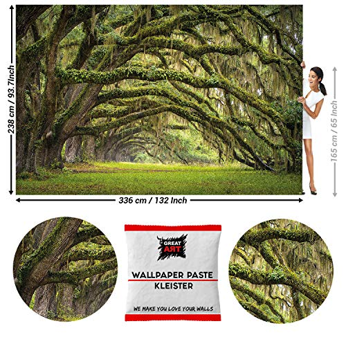 GREAT ART Photo Wallpaper Mystic Oak Forest Decoration 132.3x93.7in / 336x238cm - Wallpaper 8 Pieces Includes Paste.