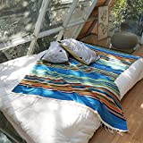 Zdada Mexican Serape Blanket for Outdoor,Home Aztec-Mexican-Falsa-Blanket,Stripe Fringe Table Cover-59x84inch