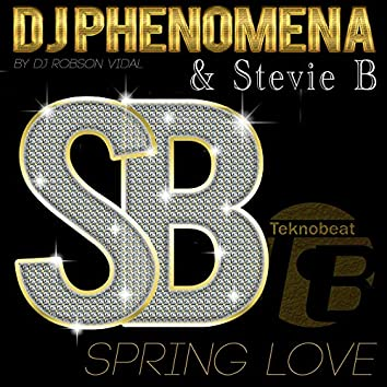 DJ Phenomena And Stevie B - Spring Love
