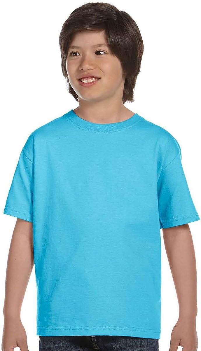 Hanes Boys' TAGLESS ComfortSoft Crewneck T-Shirt_Light Blue_L