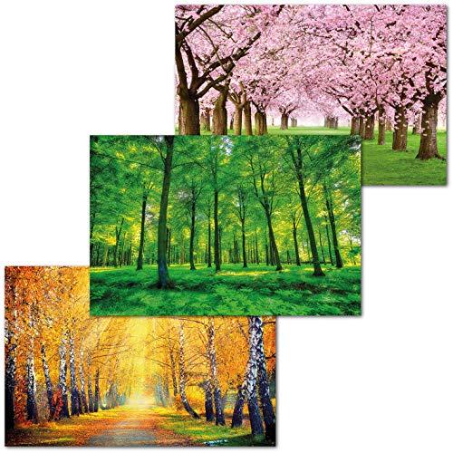 GREAT ART 3er Set XXL Poster – Saisonale Wälder – Frühling Sommer Herbst Wald Baum Wiese Allee Baumkrone Jahreszeiten Dekor Inneneinrichtung Wandbild Plakat je 140 x 100 cm