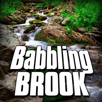 Babbling Brook (Nature Sound)