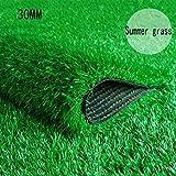 XEWNEG 30MM Gefälschter Rasenteppich, Verschlüsselt Grüne Synthetische Rasenmatte wasserdichte Breite 2 Mt Garten Außendekoration (Sommer Gras) (Size : 2x5M)